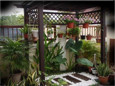 Desain Kebun Rumah Minimalis on Rumah Kebun Kecil   Genuardis Portal