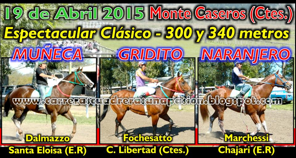 M. CASEROS - CLASICO 340
