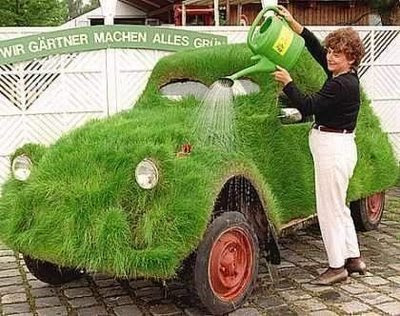 Odd Grass Green Car