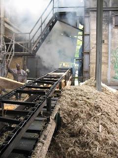 La bagasse alimente la chaudière de la Distillerie