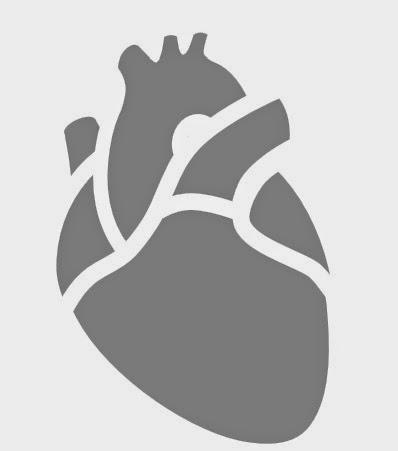 Como Hacer una Calabaza Tallada con Diseño de Anatomia Humana