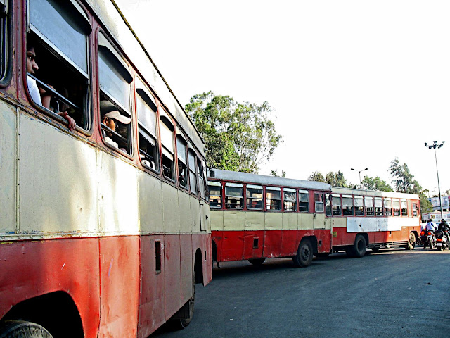line of PMT buses at traffic light
