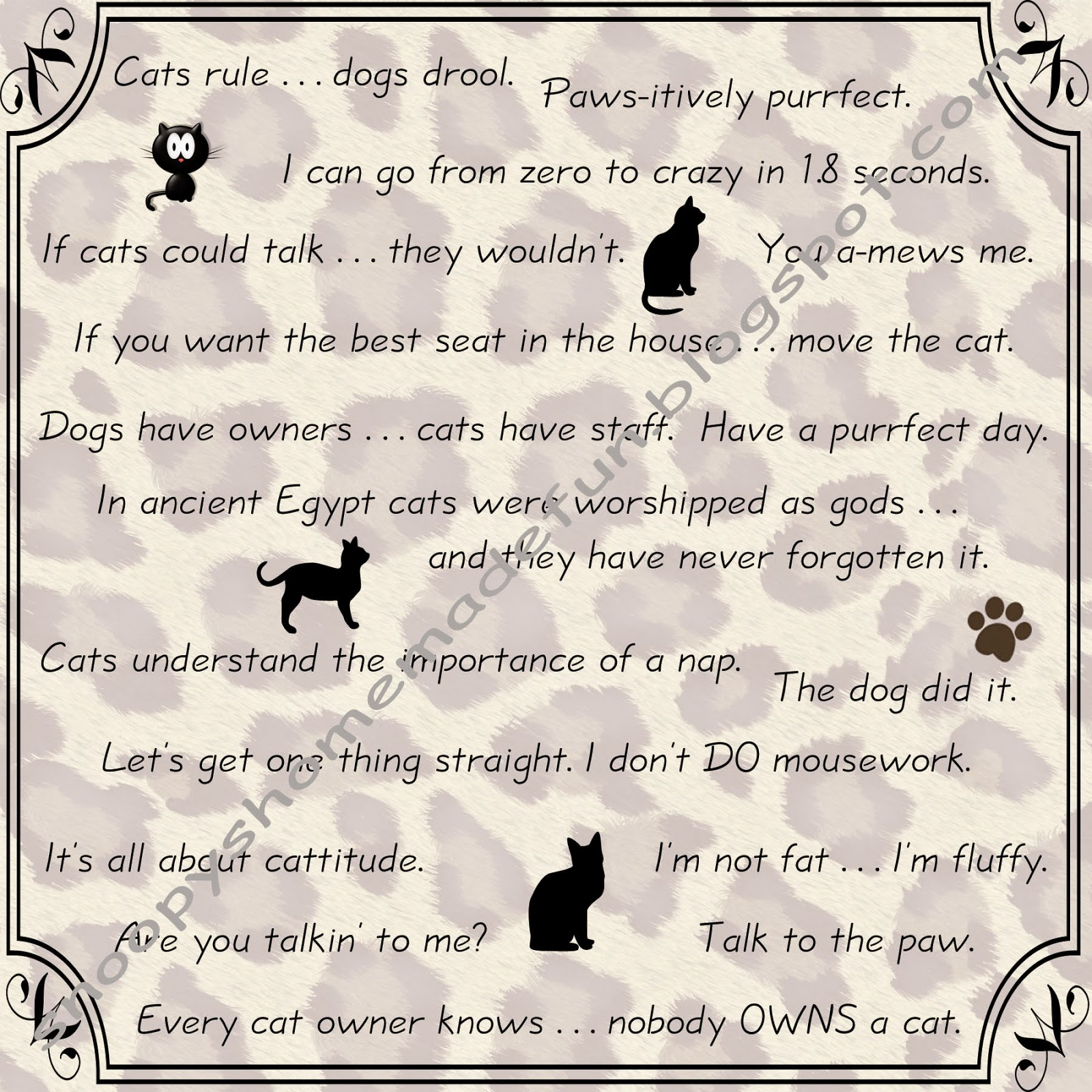 Cat sayings and sentiments