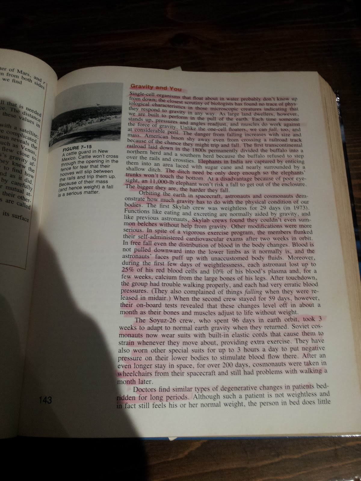 The Act Of Highlighting Is Less Time Consuming And Much Easier Than  Notetaking (to Be Discussed In An Upcoming Posting) To Be Effective In  Highlighting It