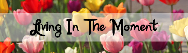 Living in the Moment Blog Button