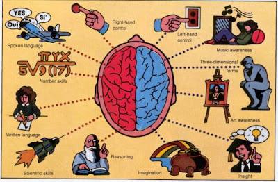 otak kanan otak kiri berkembang