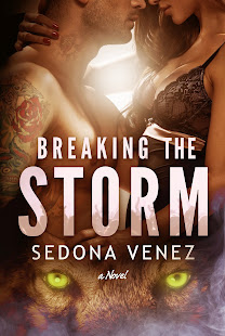 Breaking the Storm - Available Now!