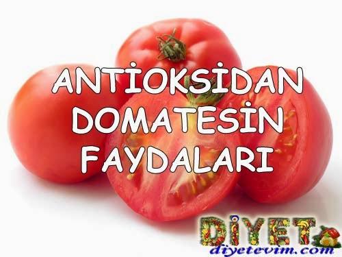 domatesin içeriği