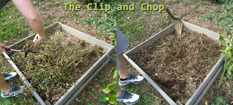 organic garden composting