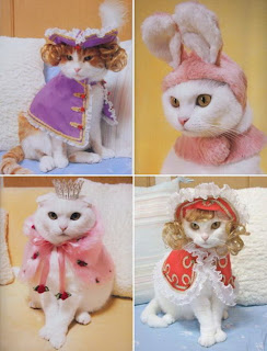 Cats wearing rabbit ears and crowns in costume