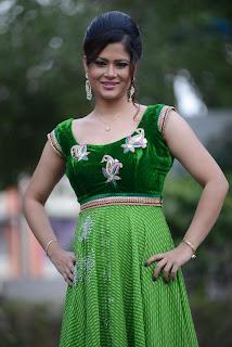 Shilpa Chakravarthy gorgeous stills 011.jpg
