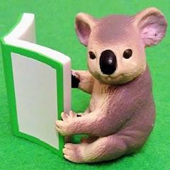 樹熊同學 Koala