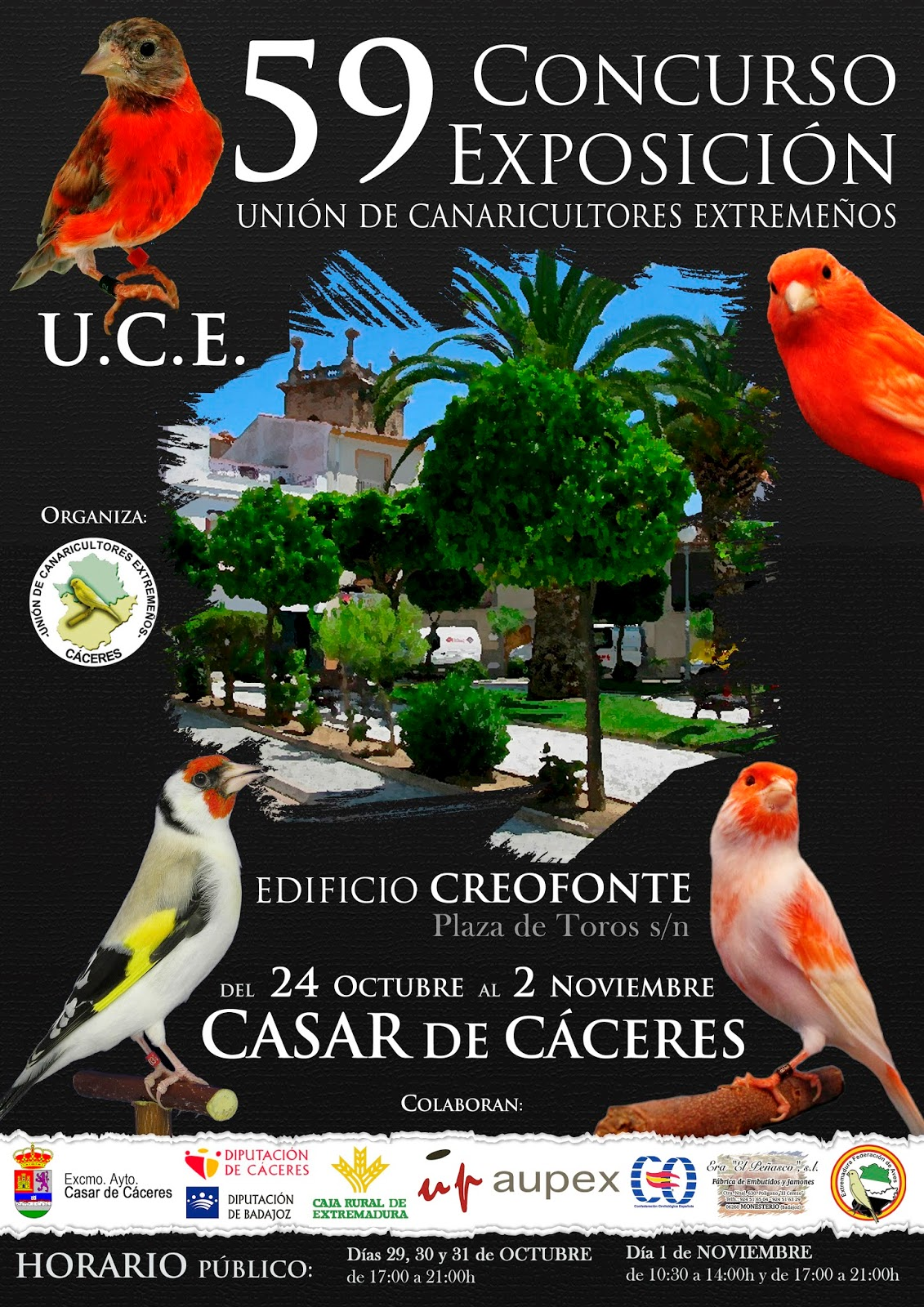 http://canaricultores.wordpress.com/2014/09/24/59o-concursoexposicion-u-c-e-calendario-bases-e-inscripciones/