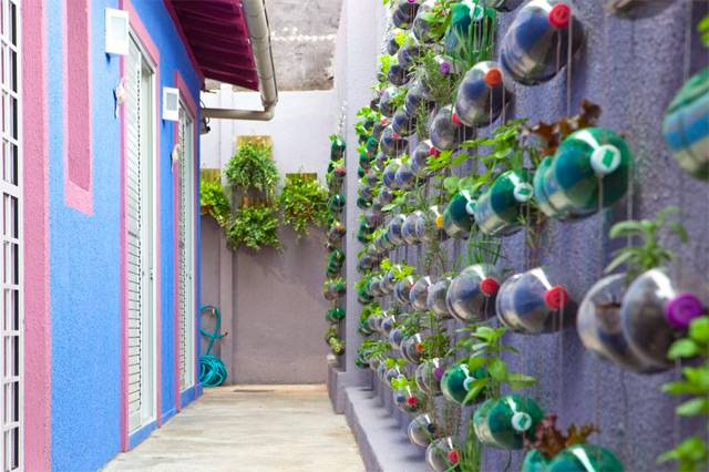 Vertical Garden Built From Recycled Plastic Bottles RiTeMaiL