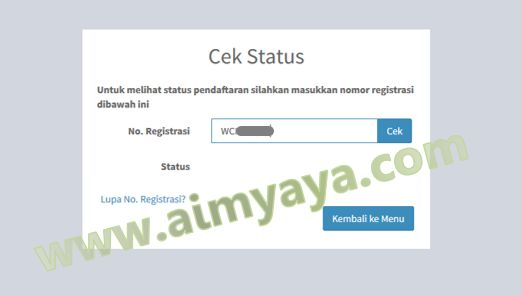 Gambar: Cek Status Nomor Registrasi