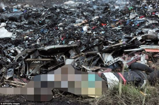 Pesawat Malaysia Airlines MH 17 jatuh