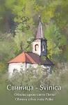 Obnova crkve svete Petke