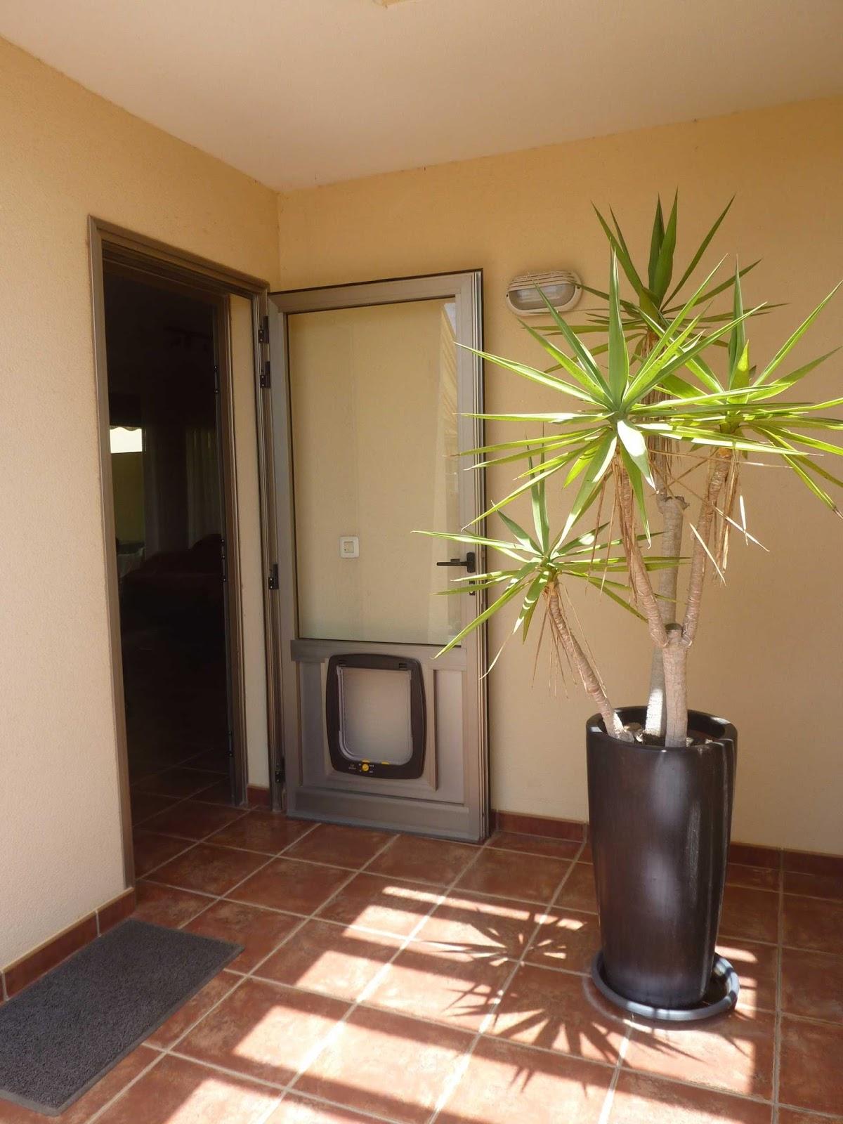 Aluxsa Tenerife Puerta Exterior De Aluminio Corta Vientos Con Gatera ~ Puertas De Aluminio Con Cristal