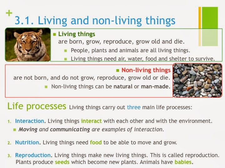 Tic Tac Science: Year 3. Unit 3. Living things. Living and ...