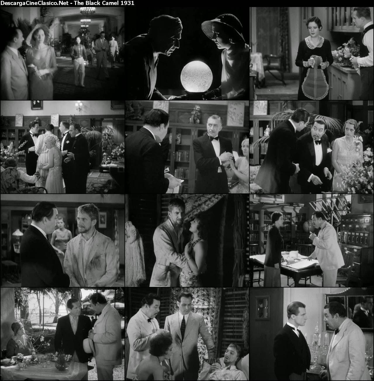 Charlie Chan: The Black Camel (1931)