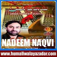 http://ishqehaider.blogspot.com/2013/11/nadeem-naqvi-n2014.html