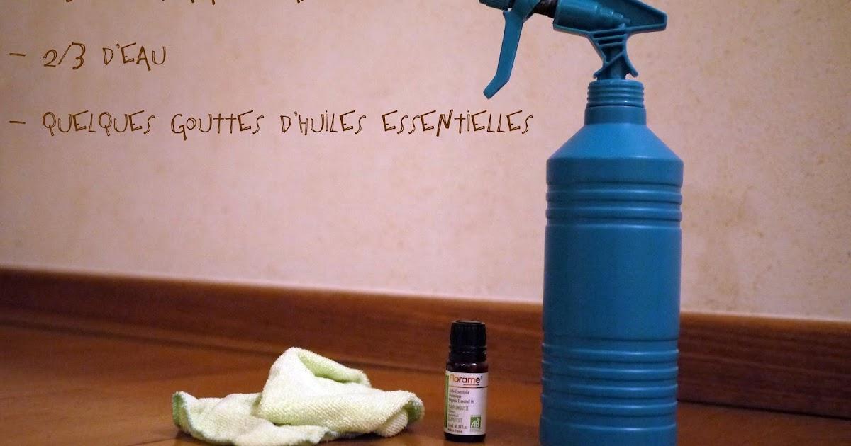La chenille verte le vinaigre blanc for Vinaigre eau de javel