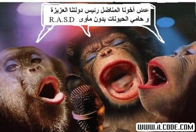 كاريكاتير مغربي جديد 2013
