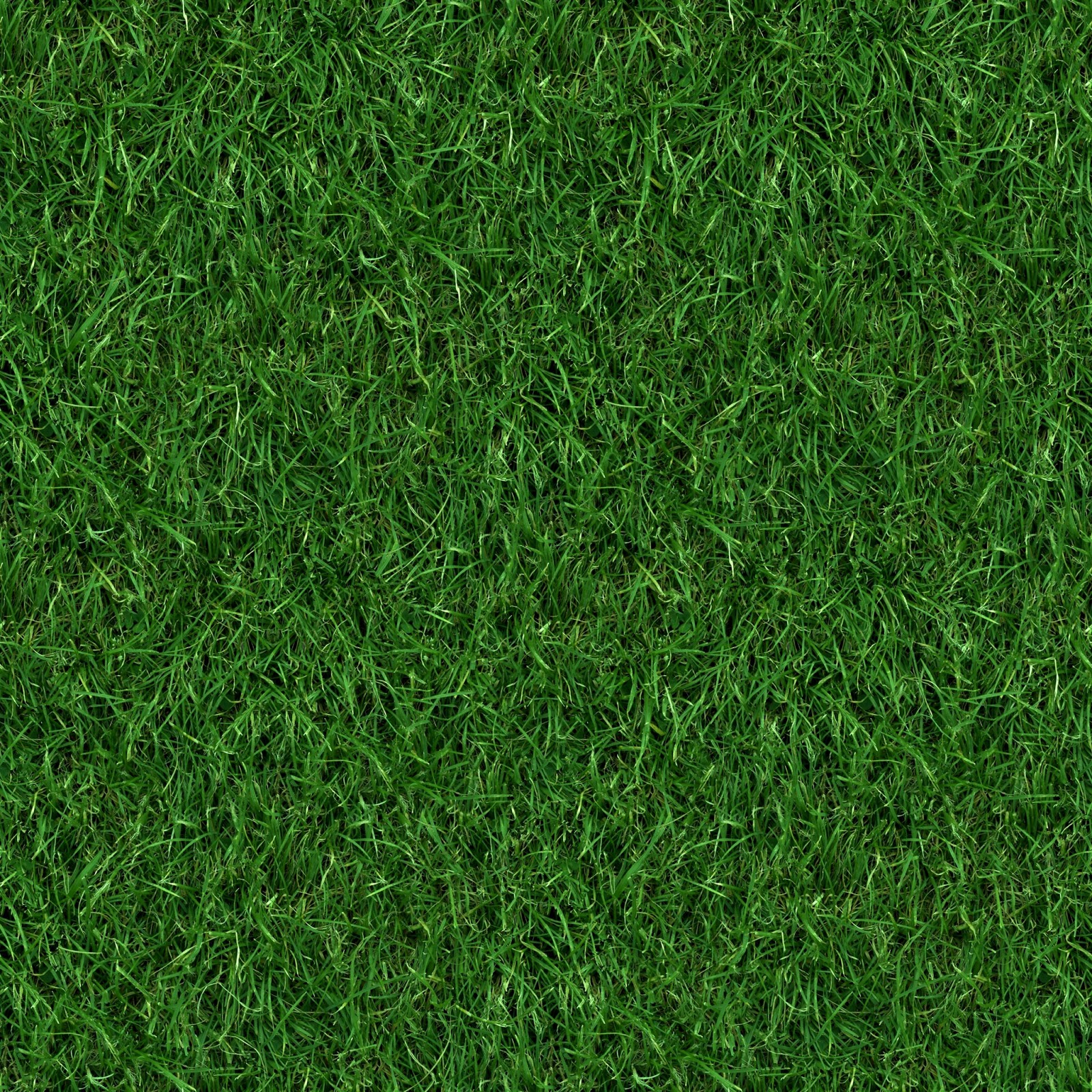 (GRASS 4) seamless turf lawn green ground field texture