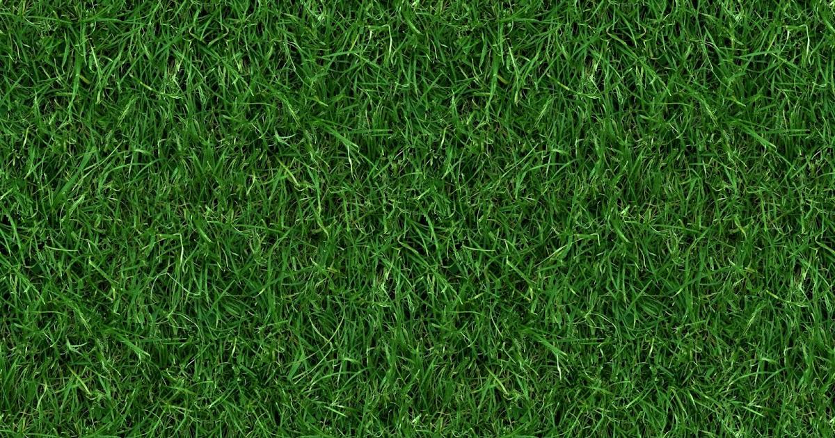 Seamless Grass Texture Game