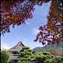 広寿山福聚寺の紅葉〜フィルムカメラで撮り残す北九州〜