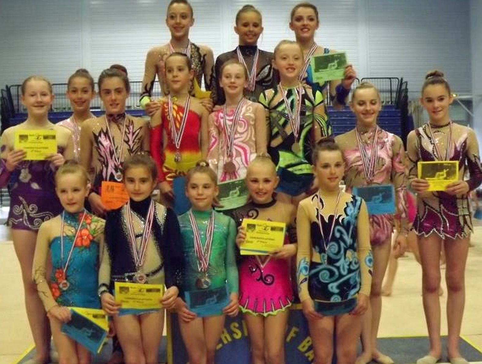 Llanelli gymnasts pick up large medal haul in Bath