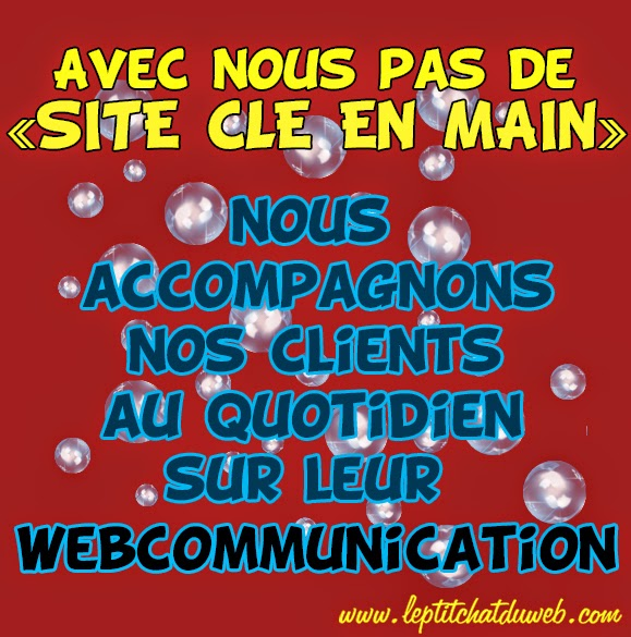 Community Manager Le P'tit Chat du Web