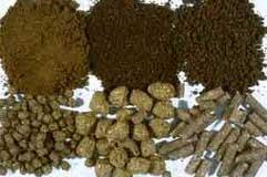 http://buka-mata.blogspot.com/2012/04/cara-membuat-pakan-ikan-lele-sendiri.html