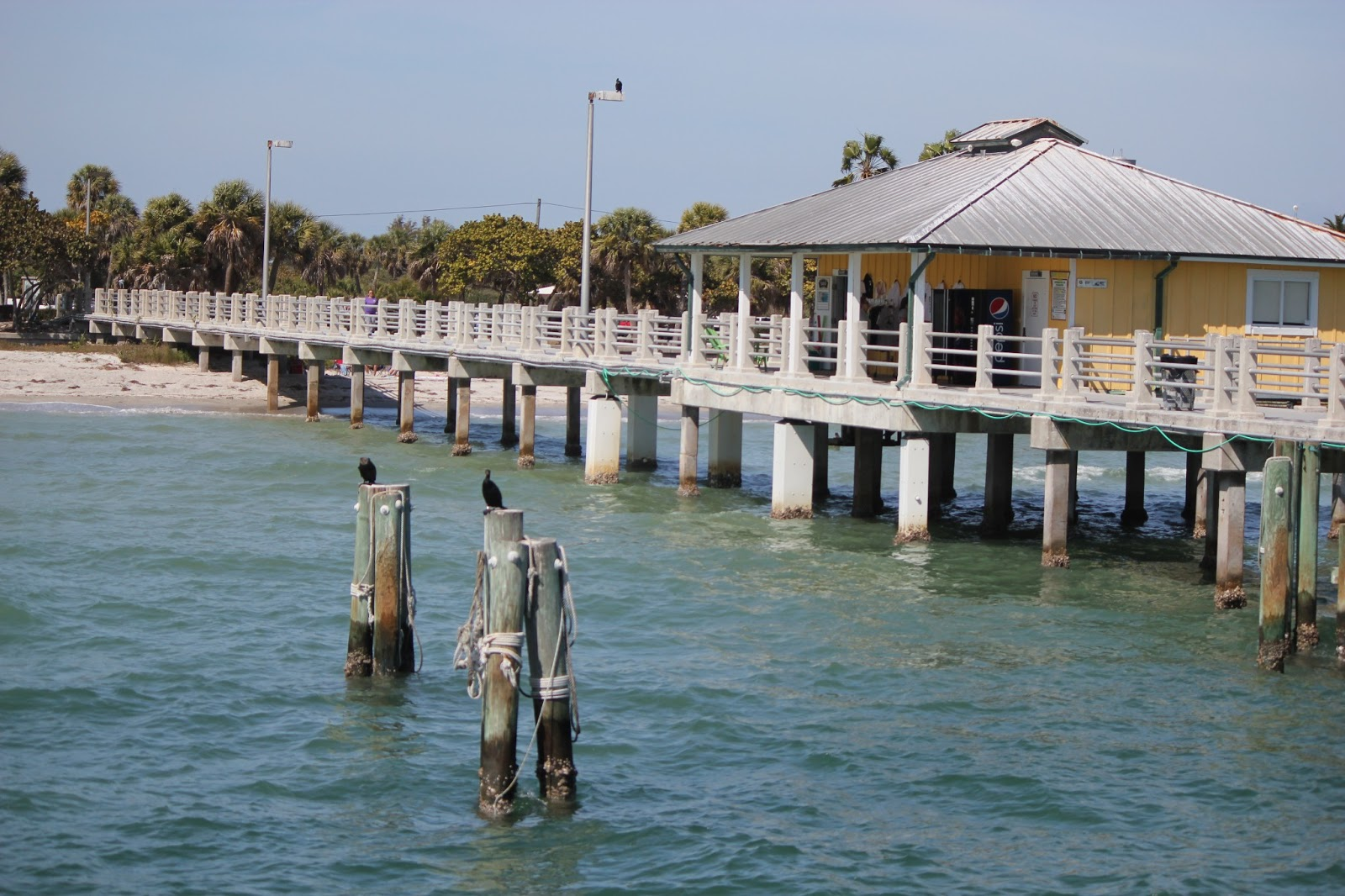 Pinellas county parks fort de soto park pretty bait and snack shop off the bay pier nvjuhfo Image collections
