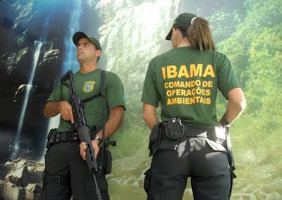 Defeso, Fiscalização, Licença Pesca Amadora, Ministério da pesca