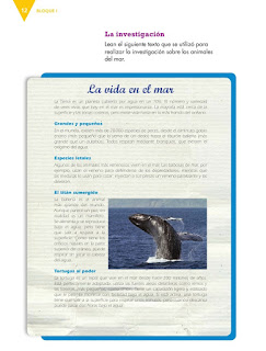 Apoyo Primaria Español 4to grado Bloque 1 lección 1 Exponer un tema de interés