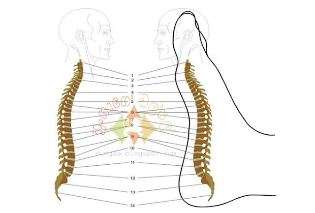 ඔබේ පාද සම්භාහනය කිරීමෙන්, කොඳු ඇට පෙළේ වේදනා අඩු වන අයුරු ## How To Reduce Spine Pain By Massaging Your Feet