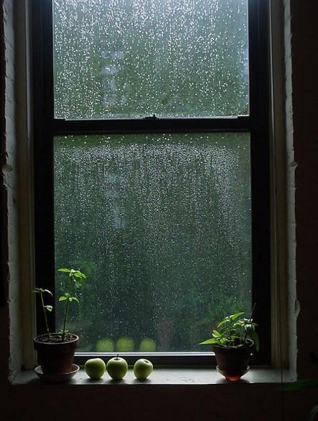 The Country Corner La Pioggia Nel Pineto