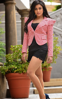 Actress Mishti Chakraborty Latest  Picture Shoot Gallery  6