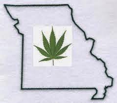 leis de cannabis
