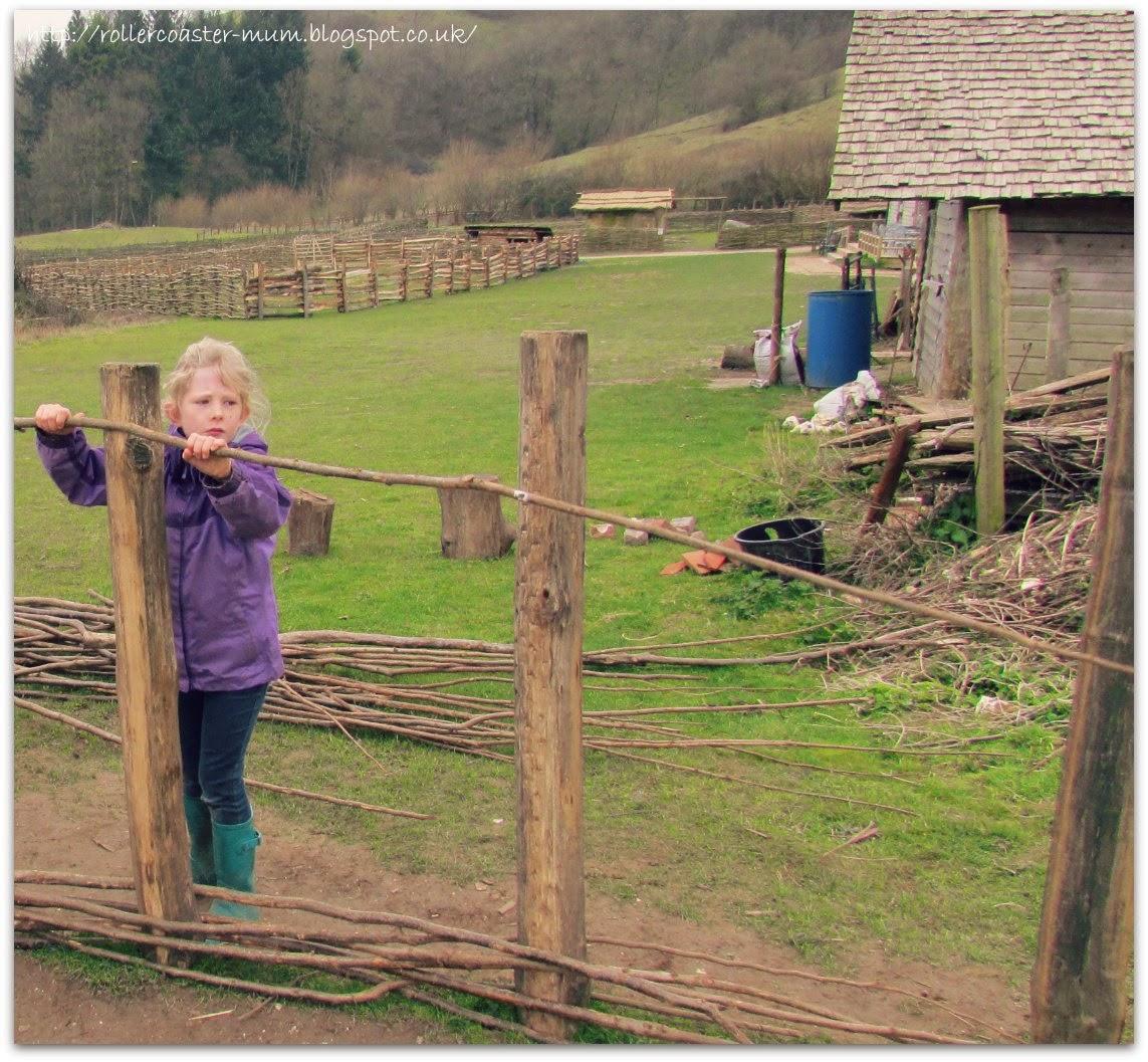 wattle fence making, Butser Ancient Farm