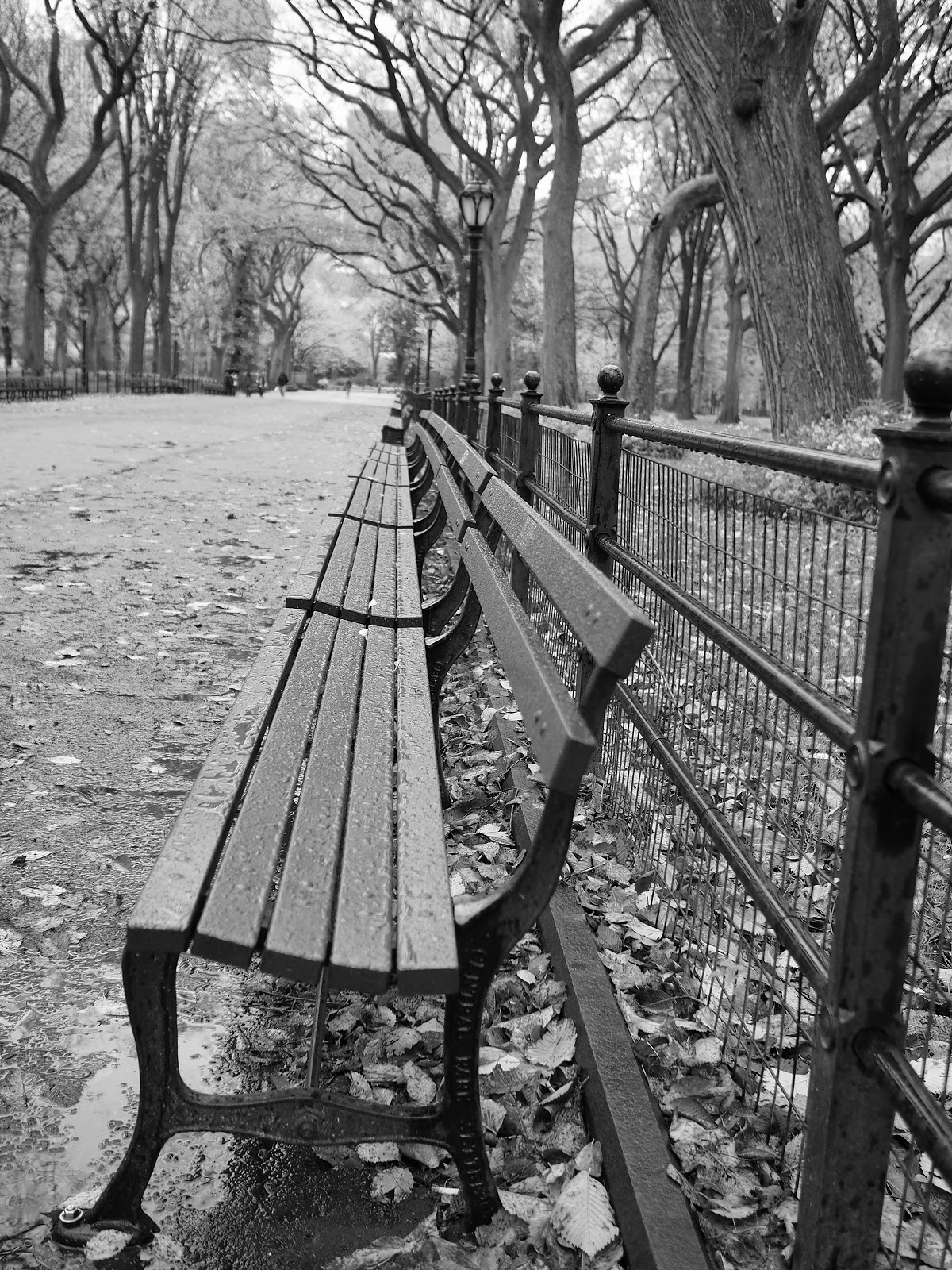 Empty Benches, #emptybenches #parkbenches #themall #centralpark #nyc #fall #fallfoliage #rainyday 2014