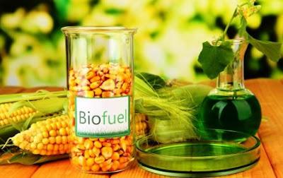 Energi Alternatif 8: Biofuel