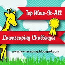 Top Mow It All