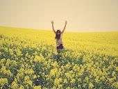 La felicidad siempre aparece