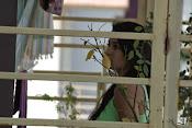Trishala shah glamorous photos-thumbnail-6