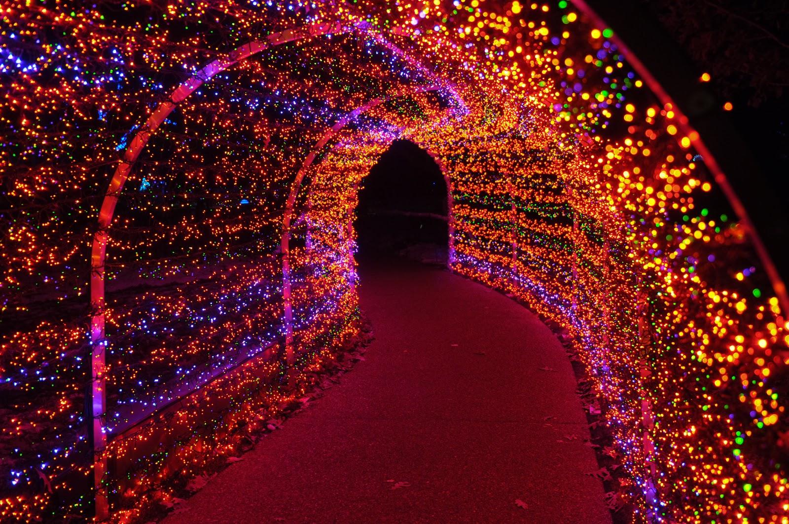 Garden Glow Botanical Gardens Missouri Botanical Garden Set To Glow During Season