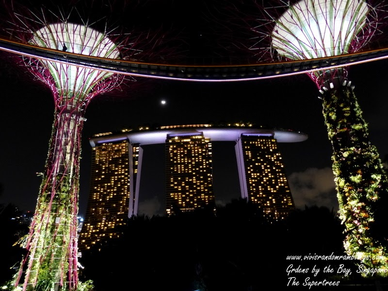 The Supertrees, Gardens by the Bay, Singapore