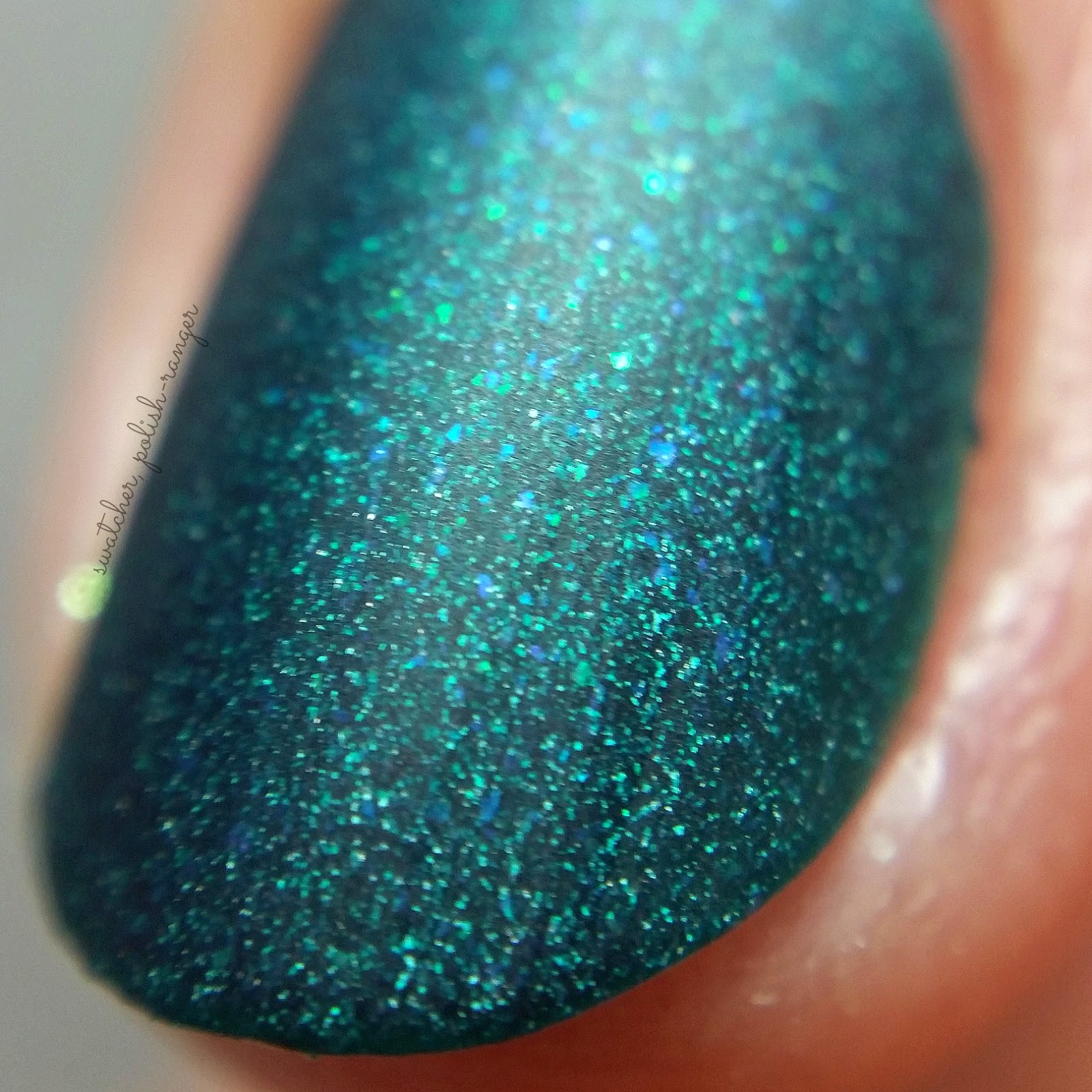 picture polish dragonfly macro