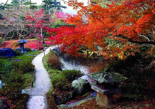 jardim japonês; jardim japones